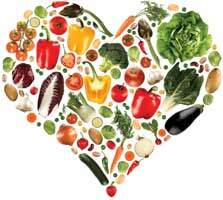 GEFO nutrition Srl: alimentazione sana